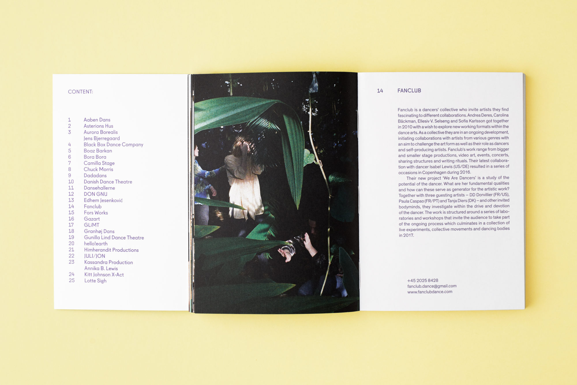 Kreative Glimt (Danish Edition)